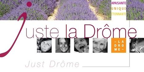 Observatoire du tourisme | L'espace info pro des offices de tourisme de Bièvre-Valloire | Scoop.it