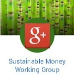 Sustainable Money Working Group (SMWG) | Peer2Politics | Scoop.it