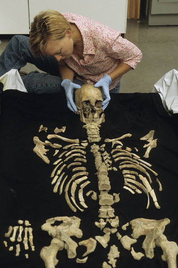 Kennewick Man closely related to Native Americans, geneticists say | The Archaeology News Network | Kiosque du monde : Amériques | Scoop.it