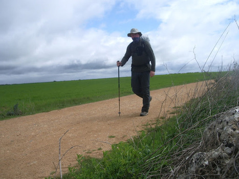 The Artichoke Adventures: The Walk of a Million Footsteps | Family Life In Spain | Scoop.it
