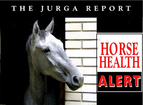 Disease Alert: University of Minnesota Uniquely Equipped to Receive and Isolate Two Wright County EHV Cases | The Jurga Report: Horse Health, Welfare, and Care | Scoop.it