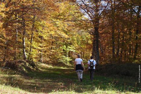Bouger en Aveyron à l'automne | L'info tourisme en Aveyron | Scoop.it