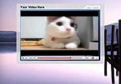 The Funniest Cat Video! | Financial Fitness Club | Scoop.it