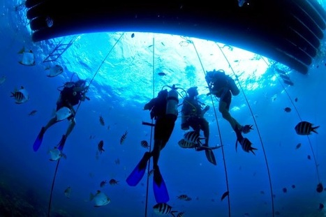 Scuba diving in Malaysia is one of the greatest attractions of the country | Hotels & Travels | Scoop.it