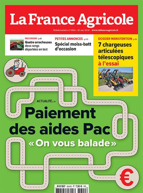 Bien-être animal : Un abattoir visité par la Commission d'enquête à Autun (71) | La Gazette des abattoirs | Scoop.it