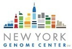 What It Takes to Be a Bioinformatician | New York Genome Center | Health and Biomedical Informatics | Scoop.it