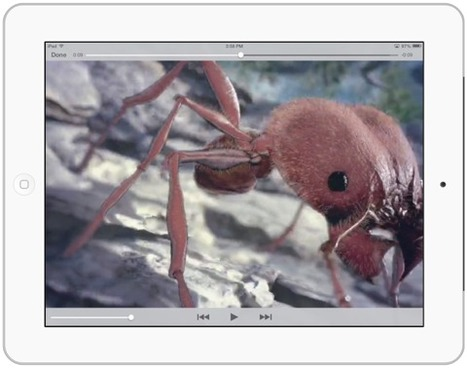 Optimizing iPad Video for iBooks Author and Pages | Publishing with iBooks Author | Scoop.it
