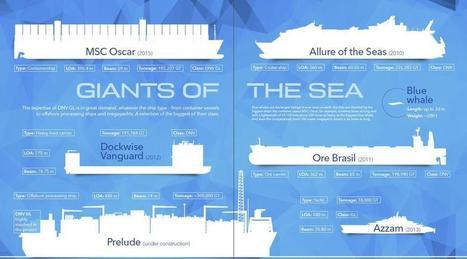 Infographic: Giants of the Sea | Offshore Australia | Scoop.it