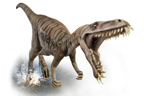 Dinosaurs   EFL Teaching Journal   Scoop.it