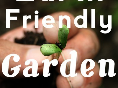 10 Sustainable Garden Products for a More Earth-Friendly Garden | 100 Acre Wood | Scoop.it