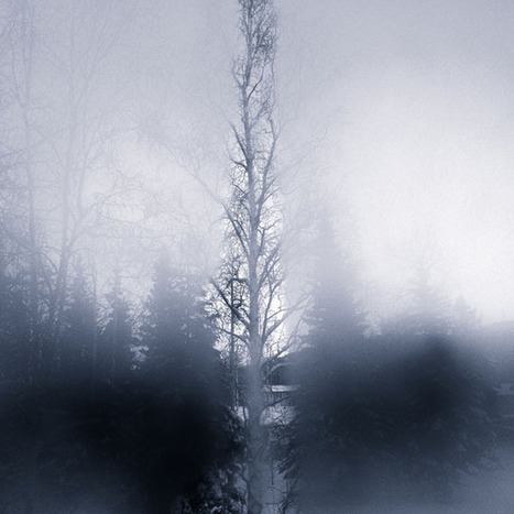 Minimalist Photographs Showing the View Through an Alaskan Cabin Window   Digital-News on Scoop.it today   Scoop.it
