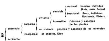 Filosofia: Un punto de vista diferente: Lógica Aristotelica | Aristóteles | Scoop.it