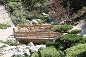 Friendship Garden blossoming in 2015 - U-T San Diego | Japanese Gardens | Scoop.it