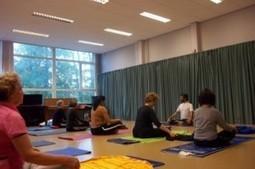 Why you should do yoga Everyday? | Yoga Blog | Yoga Teacher Training India | Scoop.it