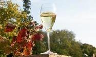 Golden vintage: hidden treasure discovered in Champagne farmhouse | DiverSync | Scoop.it