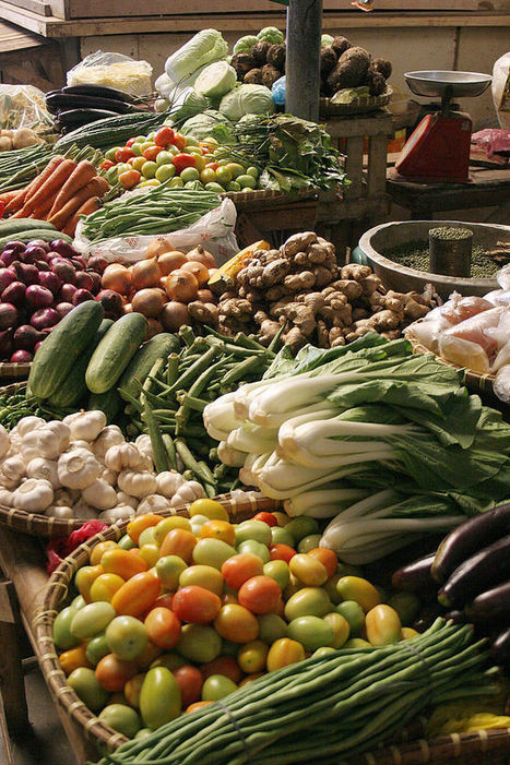 Plant-Based Diets Produce Fewer Greenhouse Gases, Increase Longevity - University Herald   Optimum Strategies for Creativity and Longevity   Scoop.it
