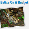 Belize Explorer - Budget Hotels and Travel in Belize | Belize in Social Media | Scoop.it
