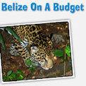 Belize Explorer - Budget Hotels and Travel in Belize   Belize in Social Media   Scoop.it