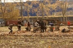 NYC's urban farms face a climate reality check | Sustainable Urban Agriculture | Scoop.it