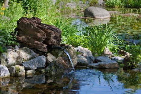 Estimez l'eau de pluie que vous pouvez récupérer chez vous! | Les colocs du jardin | Scoop.it