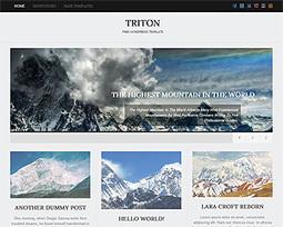 Towfiq I. - Free Wordpress Themes   CMS   Scoop.it