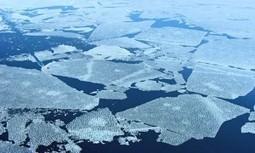 Réchauffement climatique   Ocean   réchauffement climatique   Scoop.it