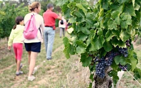 5 bonnes raisons de visiter le Haut Minervois | Le blog de l'Aude Pays Cathare | Visit Haut Minervois | Scoop.it