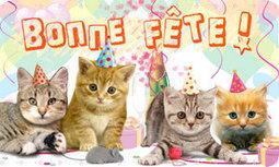 → Cartes anniversaire et cartes de voeux : 10000 cartes virtuelles gratuites | Souris verte | Scoop.it