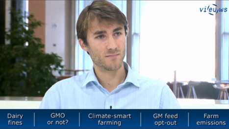 EU Agriculture briefing: Dairy fines, GMOs, COP21 & air pollution | EU Agriculture | Scoop.it