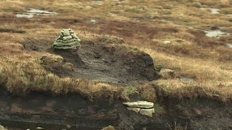 GB : Dartmoor tomb treasure hoard uncovered | World Neolithic | Scoop.it