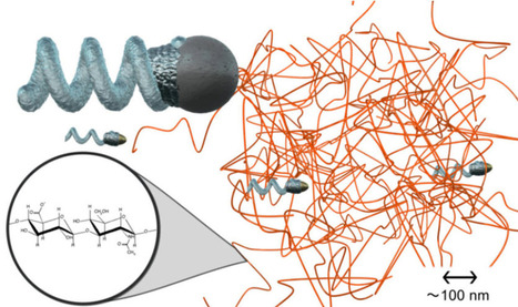 Screw-shaped nanopropeller can actively move in a gel-like fluid | Amazing Science | Scoop.it