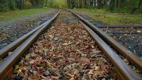 Les trains n'aiment pas l'automne - France 3 Aquitaine   BABinfo Pays Basque   Scoop.it