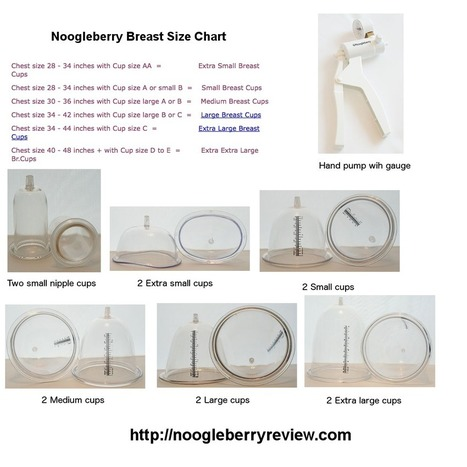Noogleberry Features and Cup Size | Does Brestrogen Work | Scoop.it