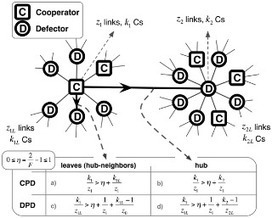 Population Structure Induces a Symmetry Breaking Favoring the Emergence of Cooperation   Social Foraging   Scoop.it