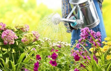 Arroser votre jardin, c'est bien mais efficacement, c'est mieux - SeLoger.com | pour mon jardin | Scoop.it