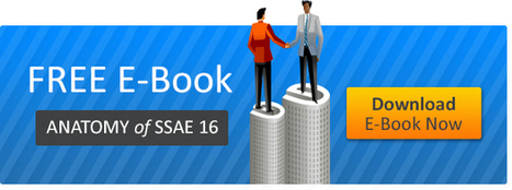 Anatomy of SSAE 16 Audit | B2B and B2C Business Opportunities | Scoop.it