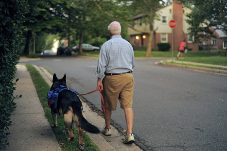 Towson seeks to put canines, and their walkers, on patrol against crime | Suburban Land Trusts | Scoop.it