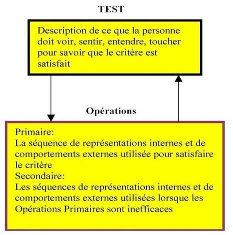 Le réseau d'expérience | Conduite du changement 2.0 | Scoop.it