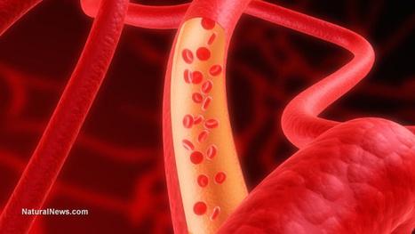 Antioxidant MitoQ rejuvenates aging arteries | Alternative Medicine | Scoop.it