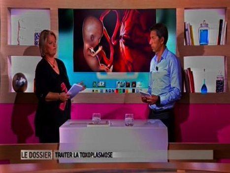 Zoonoses, toxoplasmose : pour une grossesse en toute sérenité : Allodocteurs.fr | Autour de la puériculture, des parents et leurs bébés | Scoop.it