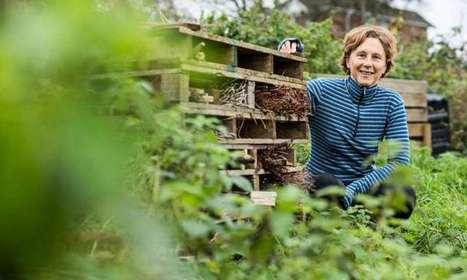 Developing sustainable food cities   Com' environnementale   Scoop.it