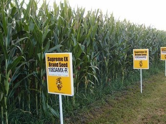 Vermont's mandatory GMO labeling law only awaits governor's signature | Vertical Farm - Food Factory | Scoop.it