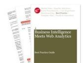 Business intelligence meets web analytics | Intelligence Economique à l'ère Digitale | Scoop.it