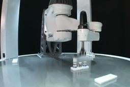 Blazing Fast Stäubli Robot Picks 200 Items Per Minute | Amazing Science | Scoop.it