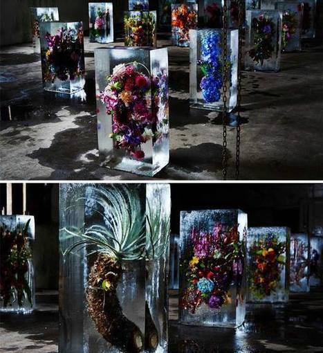 Iced Flowers by Azuma Makoto | Art Installations, Sculpture, Contemporary Art | Scoop.it