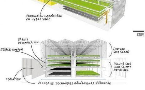 A Lyon, la ferme urbaine, ce n'est pas que des salades | Agriculture urbaine, architecture et urbanisme durable | Scoop.it