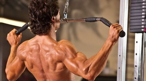 A Better Back Workout   Träning   Scoop.it
