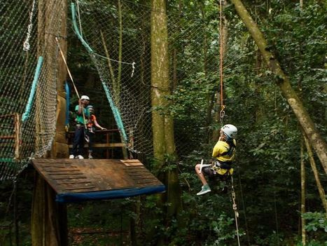 Adrenaline Rush: The five best ziplines in the Caribbean | Caribbean Things To Do | Scoop.it