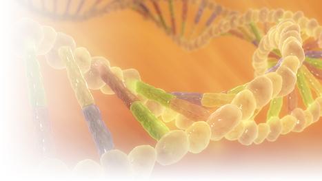 Polygon Medical Animation - DNA Illustration | 3D Medical Illustrations | Scoop.it