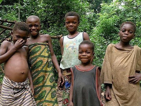 TRIP DOWN MEMORY LANE: AKA (BAYAKA/BaAKA)) PEOPLE: AN EGALITARIAN PYGMY SOCIETY WITH THE WORLD BEST DADS   Kennis Anthropology   Scoop.it